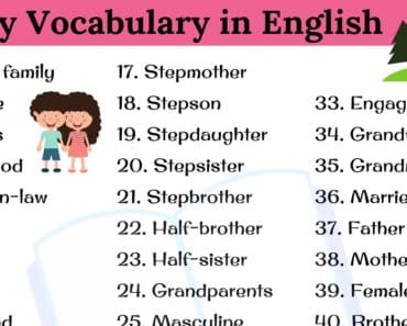 Family Word: 45+ Useful English Vocabulary Related to Family 1