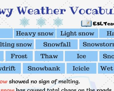 Snowy Weather Vocabulary
