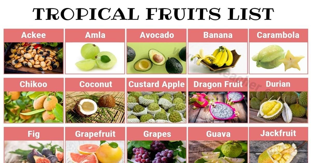 Tropical Fruits List